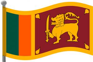 Lanka Cargo Shipping